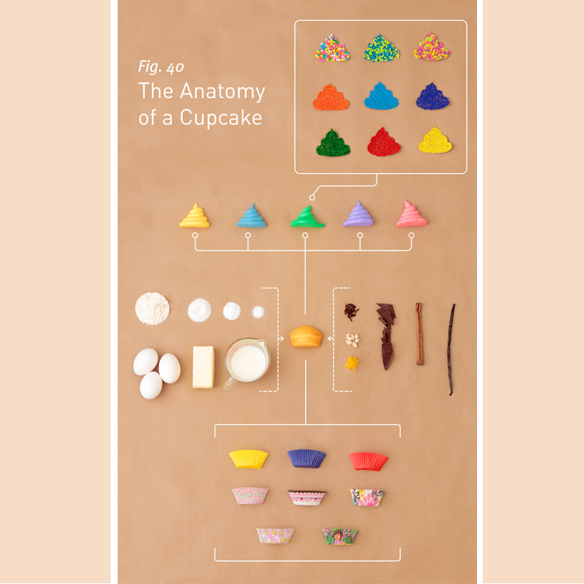 anatomy-of-cupcke